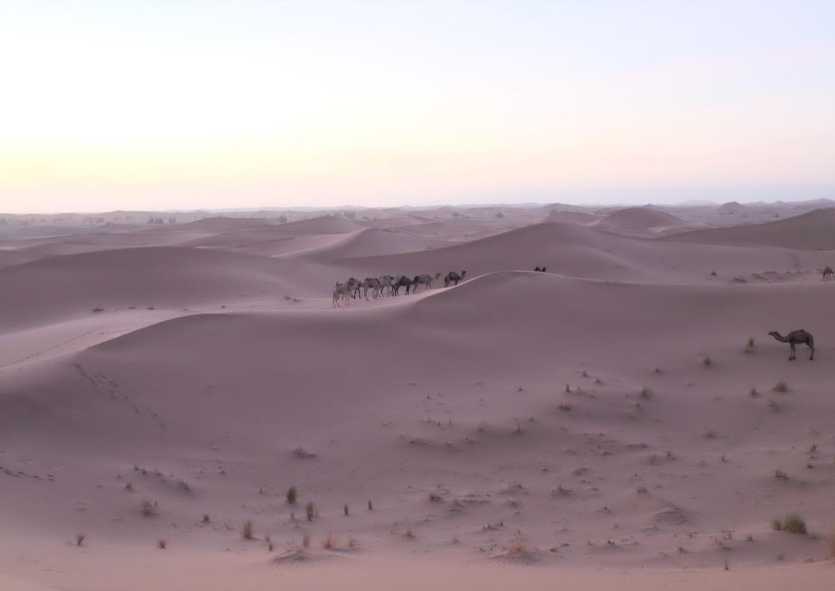 Desert00015